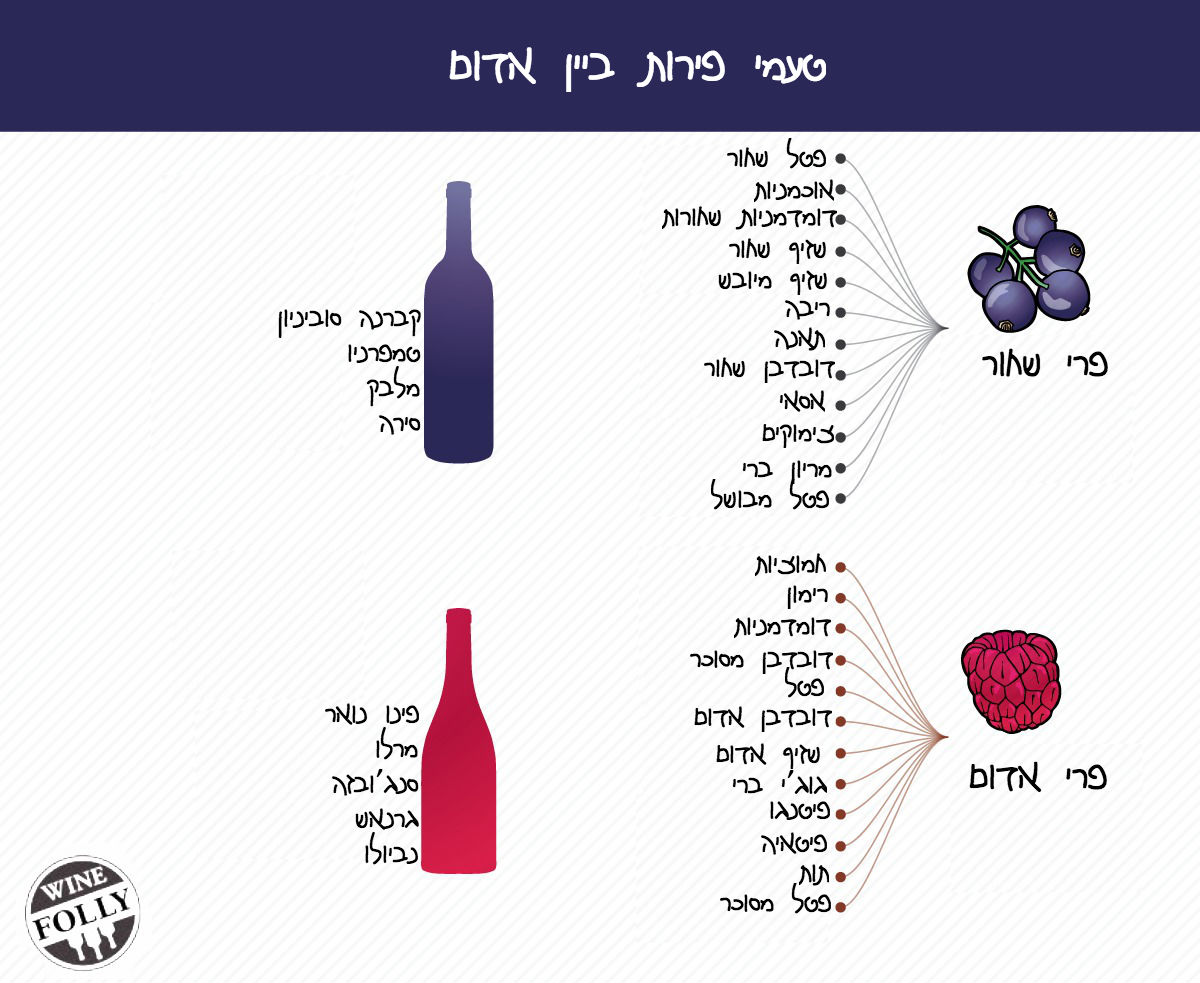 flavors-in-wine-red-wine