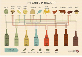 wine-and-food-pairing-chart hebrew
